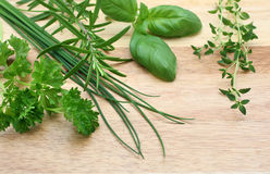 Fresh herbs. Collection of fresh herbs on cutting board Stock Photos