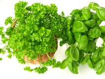 Fresh herbs,  Royalty Free Stock Image