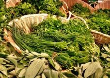 Free Fresh Herbs Stock Photography - 45392772