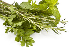 Fresh herbs. Rosemary, mint and parsley stock photography