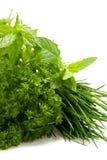 Fresh herbs Royalty Free Stock Image