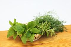 Fresh herbs in a basket Royalty Free Stock Photos