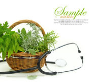 Fresh herbs in a basket Royalty Free Stock Photography