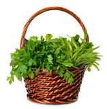 Fresh herbs in a basket Stock Images