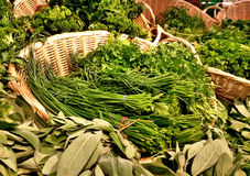 Fresh herbs. In baskets at the market. Chive, parsley, sage stock photography