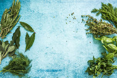 Fresh herbs border background, from above. Lay flat on pastel blue table Stock Photos