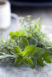 Fresh Herbs Bouquet Garni Royalty Free Stock Photography