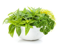 Fresh herbs in bowl Royalty Free Stock Images
