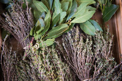 Fresh herbs. A bunch of bay leaf and thyme. The texture may be used for printing on fabric or paper, as background and in web design royalty free stock photo