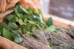 Fresh herbs. A bunch of bay leaf and thyme. The texture may be used for printing on fabric or paper, as background and in web design stock photos