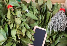 Fresh herbs. A bunch of bay leaf and thyme. Stock Images