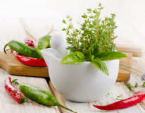 Fresh herbs and chili peppers Stock Image