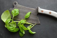 Fresh herbs and a cleaver. Fresh herbs and vintage cleaver stock image