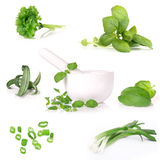 Fresh herbs collection. Over white stock photo