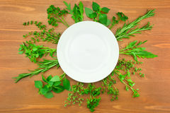 Fresh Herbs Collection Royalty Free Stock Image