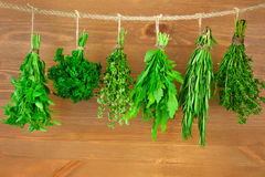 Fresh Herbs Collection / Vintage Style. Fresh Herbs Collection is Hanging and Wooden texture / Vintage Style royalty free stock photo