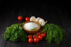 Fresh herbs collection on a wooden background. N stock images