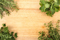 Fresh herbs on the corner of chopping board. Space for copy Stock Image