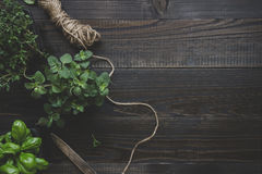 Fresh herbs on the dark wooden table, top view. Rustic background with copy space.  Stock Photography