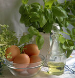 Fresh herbs and eggs Royalty Free Stock Image