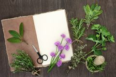 Free Fresh Herbs For Drying Royalty Free Stock Photography - 110148987