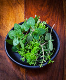 Fresh herbs from garden Royalty Free Stock Images