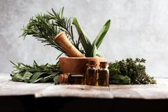 Fresh herbs from the garden and the different types of oils for massage and aromatherapy on table. Fresh herbs from the garden and the different types of oils royalty free stock images
