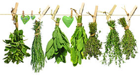 Fresh herbs and hearts of cloth Stock Photo