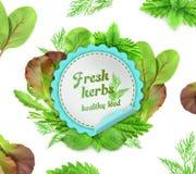 Fresh herbs illustration Stock Photos