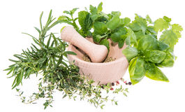 Fresh Herbs (isolated on white) Royalty Free Stock Photo