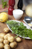 Fresh herbs in the kitchen.  Stock Photography