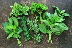 Fresh herbs in the kitchen. Collection of fresh herbs on wooden background stock image