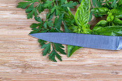 Fresh herbs and knife on cutting board Stock Images