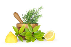 Fresh Herbs and Lemon Royalty Free Stock Image