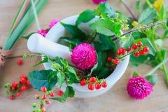Fresh herbs in the mortar, alternative medicine Royalty Free Stock Photo
