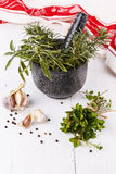 Fresh herbs in mortar over white wooden background Royalty Free Stock Image