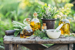 Fresh herbs and oils. Fresh herbs from the garden and the different types of oils for massage and aromatherapy Stock Photos