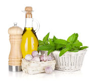 Fresh herbs, olive oil and pepper shaker Stock Images