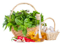 Fresh herbs with olive oil and spices Royalty Free Stock Images
