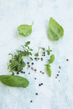 Fresh herbs with oregano, basil and pepper spices Royalty Free Stock Photos