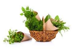 Fresh herbs oregano, rosemary, parsley and sage Royalty Free Stock Photo
