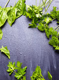 Fresh herbs over black wooden background Royalty Free Stock Images