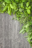 Fresh herbs over grey wooden Royalty Free Stock Image