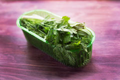Fresh herbs in plastic container. Fresh herbs in a transparent plastic container stock photos