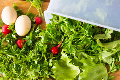Fresh herbs and radishes in a container and about. Parsley, lettuce, radish and eggs for salad. Wooden background. royalty free stock photography