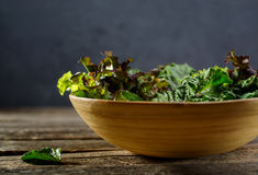 Fresh herbs for salad in the bowl Stock Photos