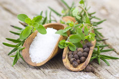 Fresh herbs, salt and pepper stock photography