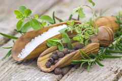Fresh herbs, salt and pepper Royalty Free Stock Photography