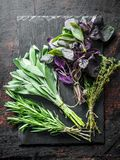 Fresh herbs. Salvia, thyme, rosemary and Basil on a stone Board. On dark rustic background stock image