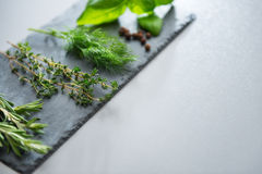 Fresh herbs on a slate Stock Images
